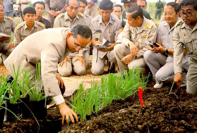 วันดินโลก, ในหลวง ร9, world soil day, มหาวิทยาลัยสยาม