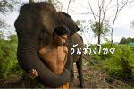 วันช้างไทย Elephant Day