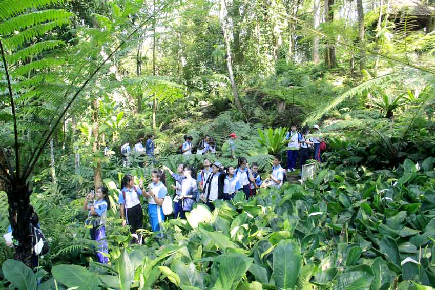 Biodiversity-สิ่งแวดล้อมสัตว์ป่าและพันธุ์พืช
