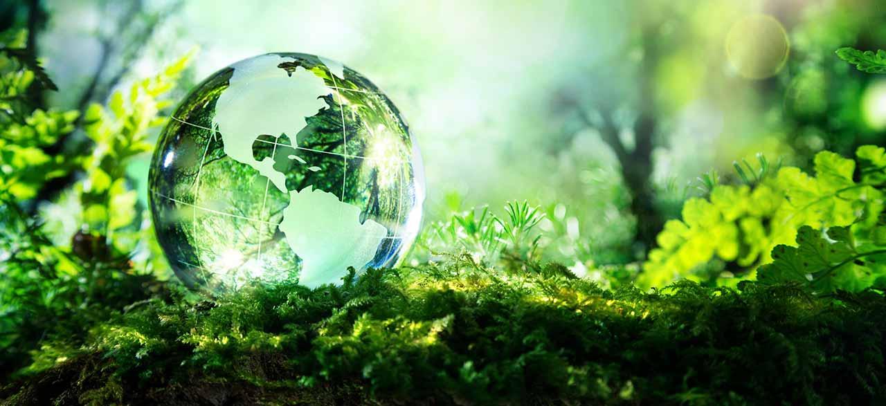 (International Day for Biological Diversity